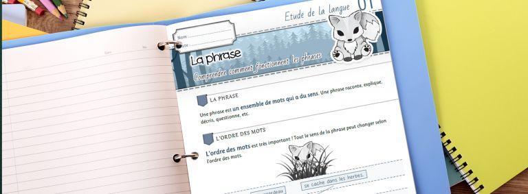 Leçons de français