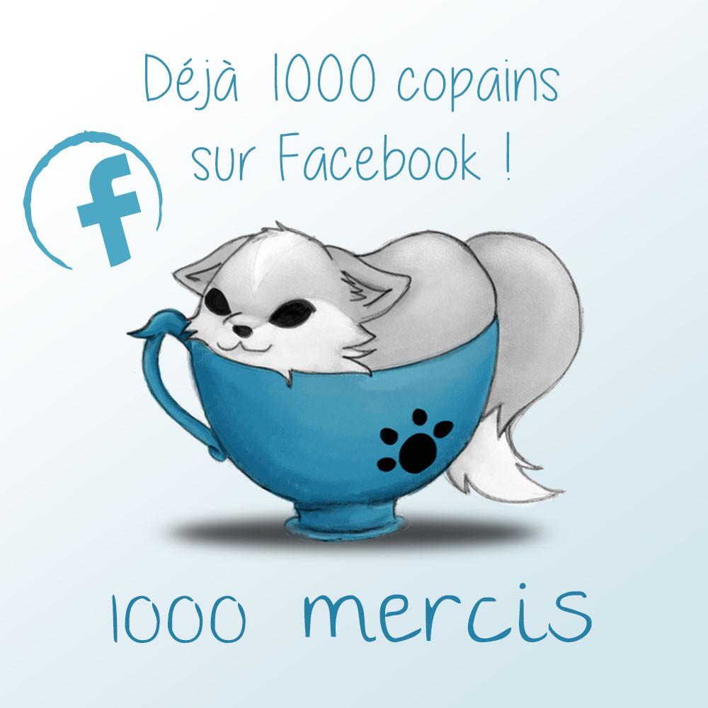 1000 mentions j'aime sur facebook